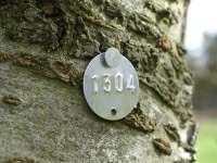 Tree and Forestry Survey Tags, Construction Tags