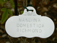professionally label your garden tags / markers